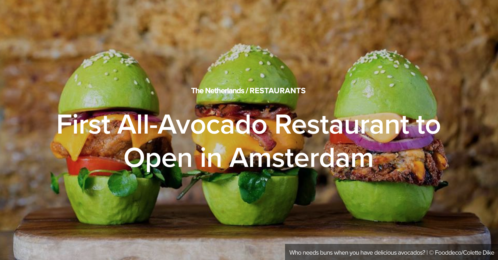 The First Avocado Café in the World is Coming Soon – Spring of 2017